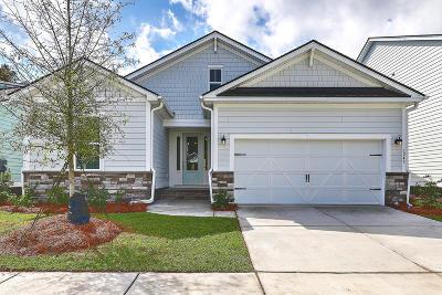 Mount Pleasant Single Family Home For Sale: 1245 Gannett Road