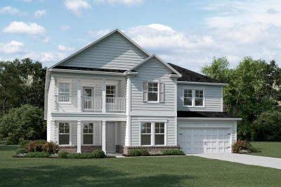 Summerville Single Family Home For Sale: 242 Bering Lane