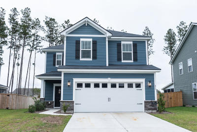 Summerville Single Family Home For Sale: 213 Basket Grass Lane