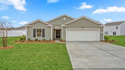 Charleston County Single Family Home Contingent: 2629 Alamanda Drive