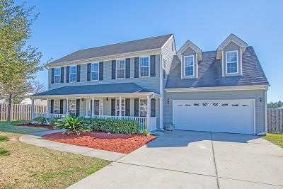 Summerville Single Family Home For Sale: 9005 Chato Court