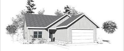 Mount Pleasant Single Family Home For Sale: 1345 Hamlin Road