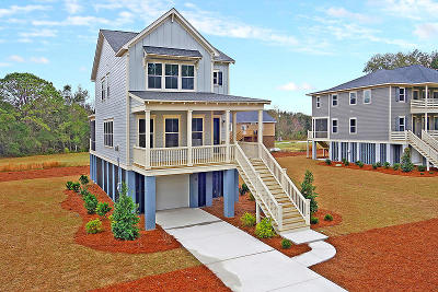 Charleston County Single Family Home For Sale: 2174 Brown Pelican Lane