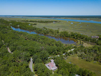 Kiawah Island Single Family Home For Sale: 201 Chinaberry Lane