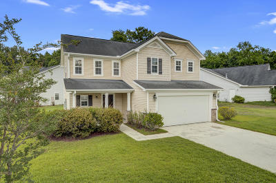Charleston County, Berkeley County, Dorchester County Single Family Home For Sale: 101 Arithmetic Court