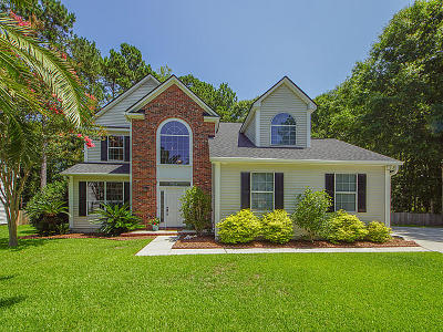 Charleston County, Berkeley County, Dorchester County Single Family Home For Sale: 3324 Cedar Creek Court