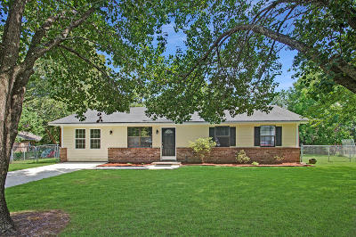 Summerville Single Family Home For Sale: 1003 Colony Court