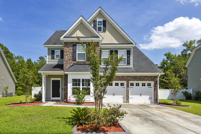 Moncks Corner Single Family Home For Sale: 124 Blackwater Way