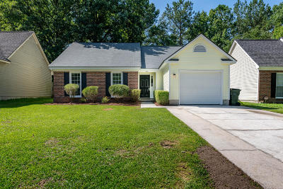 Goose Creek Single Family Home For Sale: 228 Alston Circle