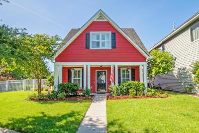 Summerville Single Family Home For Sale: 101 Amaranth Avenue