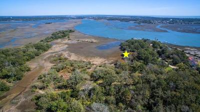 Johns Island Residential Lots & Land For Sale: 7083 Whistling Alligator Way