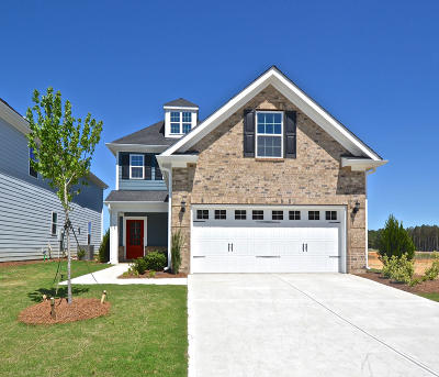 Charleston County Single Family Home For Sale: 2313 Town Woods Road