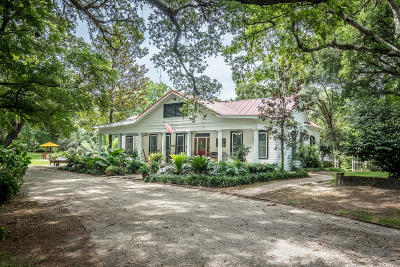 Walterboro Single Family Home For Sale: 203 Witsell Street