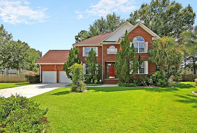 Goose Creek Single Family Home For Sale: 107 Paige Court