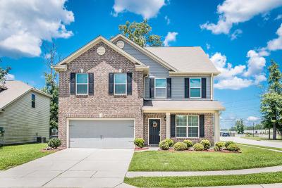 North Charleston Single Family Home For Sale: 7626 Haywood Street