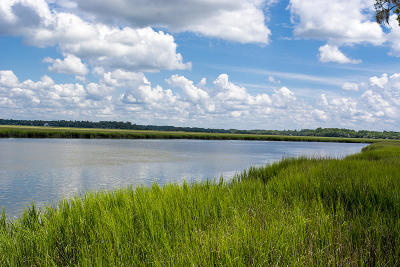 Edisto Island SC Residential Lots & Land For Sale: $765,000