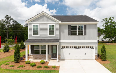 Goose Creek Single Family Home For Sale: 2166 Hyrne Drive