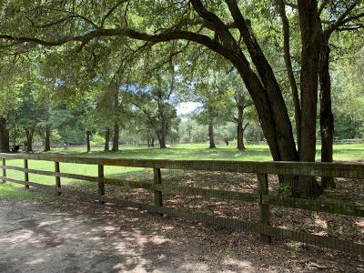 Johns Island Residential Lots & Land For Sale: 3535 Bohicket Road