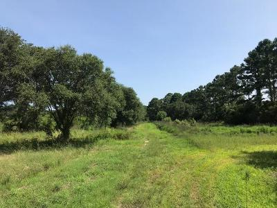 Edisto Island SC Residential Lots & Land For Sale: $154,000