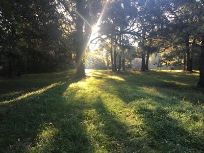 Johns Island Residential Lots & Land For Sale: 3577 Bohicket Road