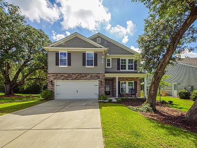 Single Family Home For Sale: 3960 Hanoverian Drive