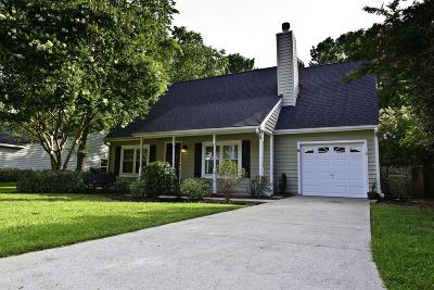 Mount Pleasant Single Family Home For Sale: 556 Castle Hall Road