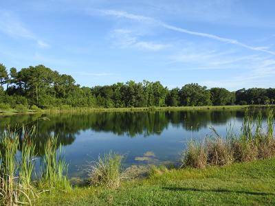 Awendaw Residential Lots & Land For Sale: 1196 Hitchfield Lane