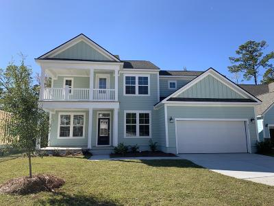Summerville Single Family Home For Sale: 117 True Grit Way