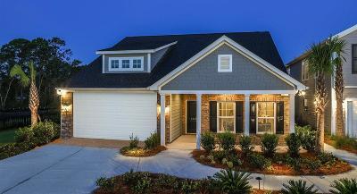 Goose Creek Single Family Home For Sale: 128 Daniels Creek Circle