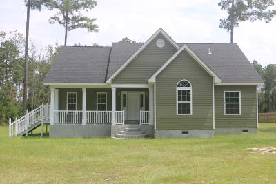 Walterboro Single Family Home For Sale: 5360 Jefferies Highway