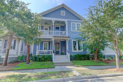 Mount Pleasant Single Family Home For Sale: 1588 Paradise Lake Drive