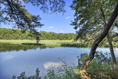 Charleston Single Family Home For Sale: 315 Martins Creek Lane