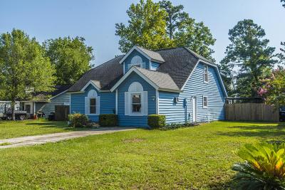 Mount Pleasant Single Family Home For Sale: 1267 Lake Mallard Boulevard