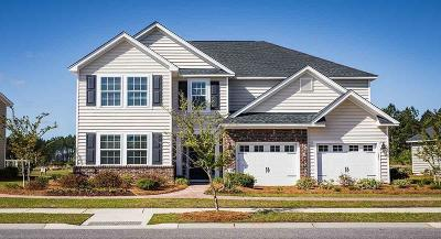Summerville SC Single Family Home Contingent: $365,765