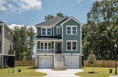 Charleston Single Family Home Contingent: 529 Amalie Farms Drive