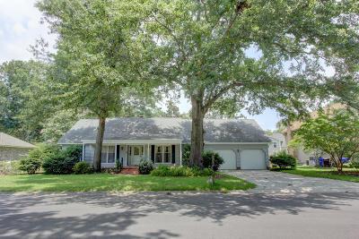 Mount Pleasant Single Family Home For Sale: 1251 W Vagabond Lane