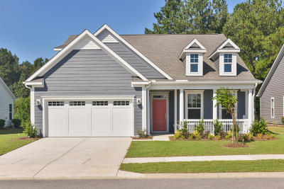 Summerville Single Family Home For Sale: 5047 Song Sparrow Way