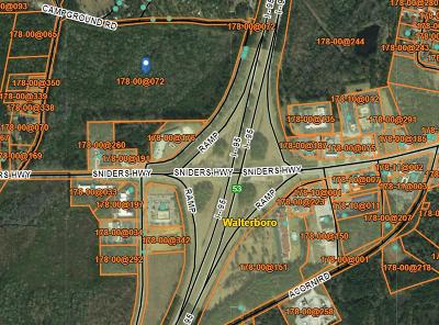 Residential Lots & Land For Sale: Sniders Hwy