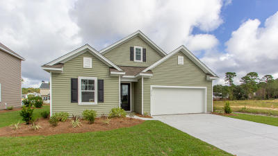 Johns Island Single Family Home For Sale: 2738 Sunrose Lane