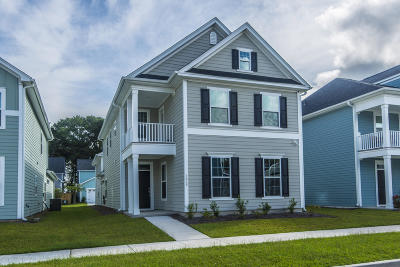 Charleston County Single Family Home For Sale: 3028 Plumier Place