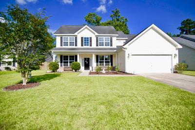 Berkeley County Single Family Home For Sale: 210 Palmetto Village Circle