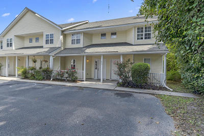 Charleston County Attached For Sale: 235 Stefan Drive #1-E
