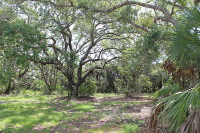 Edisto Island SC Residential Lots & Land For Sale: $119,000