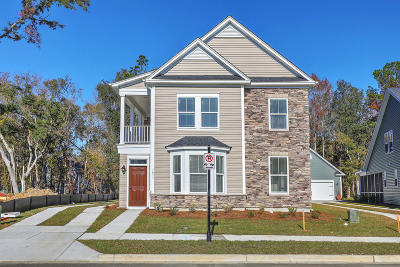 Charleston Single Family Home For Sale: 457 Spring Hollow Drive
