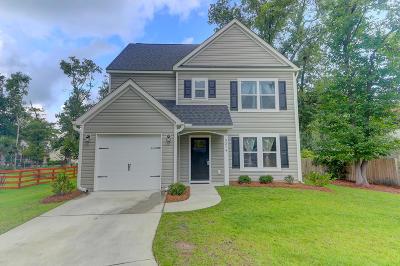 Johns Island Single Family Home For Sale: 3374 Dunwick Drive