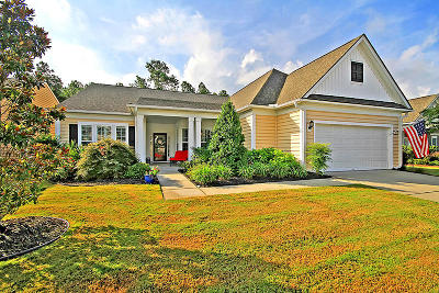 Summerville Single Family Home For Sale: 263 Waterfront Park Drive