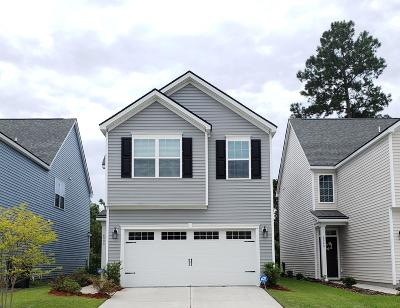 Dorchester County Single Family Home For Sale: 8990 Cat Tail Pond Road