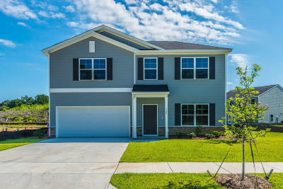 Single Family Home For Sale: 126 Clydesdale Circle