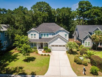 Charleston Single Family Home For Sale: 716 Canopy Cove