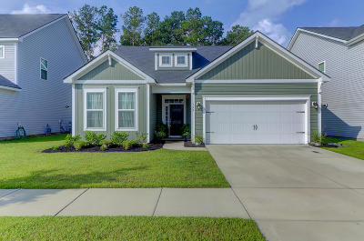 Summerville Single Family Home For Sale: 155 Basket Grass Lane
